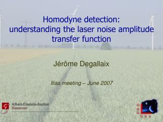 Homodyne detection: understanding the laser noise amplitude transfer function
