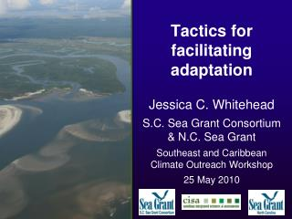 Tactics for facilitating adaptation