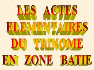 LES   ACTES ELEMENTAIRES DU   TRINOME EN   ZONE   BATIE