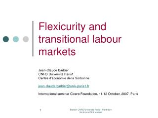 Flexicurity and transitional labour markets