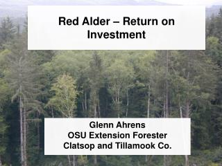 Red Alder – Return on Investment