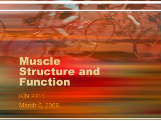 Muscle Structure and Function