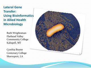 Lateral Gene Transfer:  Using Bioinformatics in Allied Health Microbiology