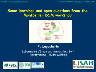 Some learnings and open questions from the Montpellier DSM workshop