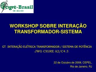 WORKSHOP SOBRE INTERA  O TRANSFORMADOR-SISTEMA