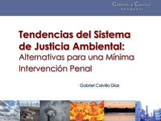 Tendencias del Sistema de Justicia Ambiental: Alternativas para una Mínima Intervención Penal