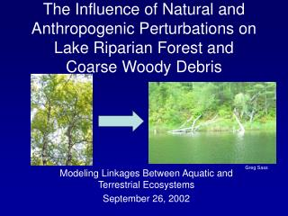 The Influence of Natural and Anthropogenic Perturbations on Lake Riparian Forest and  Coarse Woody Debris