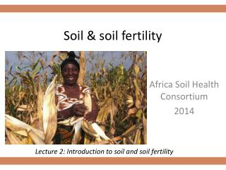 Soil & soil fertility