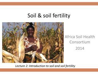 Soil & soil fertility