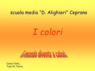 """scuola media """"D. Alighieri"""" Ceprano I colori"""
