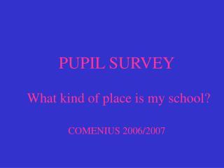 PUPIL SURVEY    What kind of place is my school? COMENIUS 2006/2007