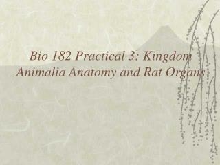 Bio 182 Practical 3: Kingdom Animalia Anatomy and Rat Organs