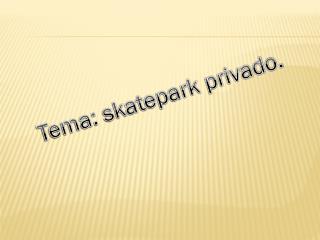 Tema: skatepark privado.