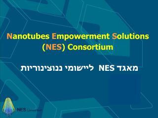 N anotubes  E mpowerment  S olutions  ( NES ) Consortium