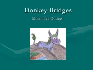 Donkey Bridges