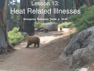 Lesson 13: Heat Related Illnesses  Emergency  Reference  Guide  p.  59-64