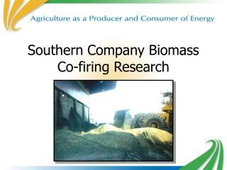 Southern Company Biomass Co-firing Research