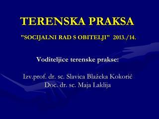 """TERENSKA PRAKSA """"SOCIJALNI RAD S OBITELJI"""" 2013./14."""