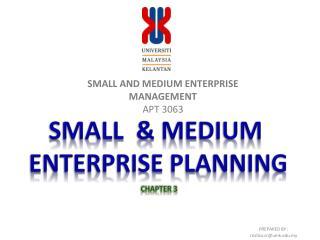 SMALL AND MEDIUM ENTERPRISE MANAGEMENT APT 3063