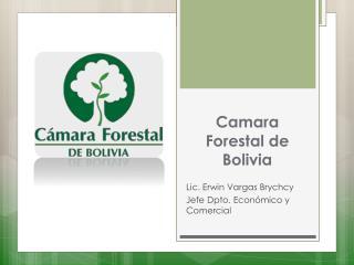 Camara Forestal de Bolivia