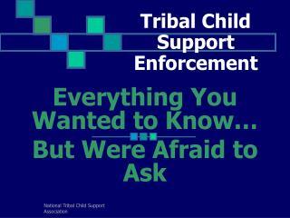 Tribal Child Support Enforcement