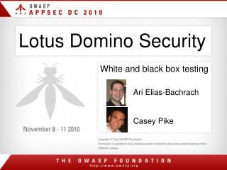 Lotus Domino Security