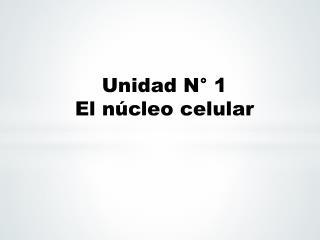 Unidad N° 1 El núcleo celular