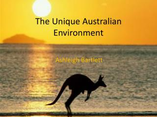 The Unique Australian Environment