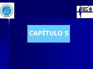 CAP�TULO 5