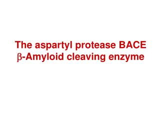 The aspartyl protease BACE  b -Amyloid cleaving enzyme