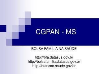 CGPAN - MS