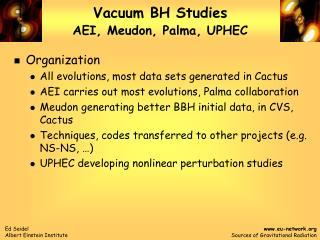 Vacuum BH Studies AEI, Meudon, Palma, UPHEC