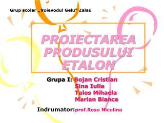 PROIECTAREA PRODUSULUI ETALON