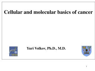 Cellular and molecular basics of cancer                           Yuri Volkov, Ph.D., M.D.