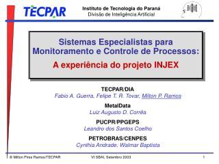 Sistemas Especialistas para Monitoramento e Controle de Processos:  A experiência do projeto INJEX