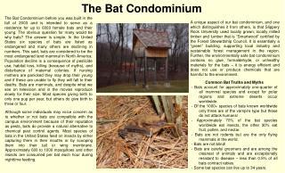 The Bat Condominium