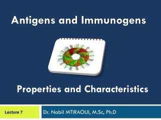 Dr. Nabil MTIRAOUI, M.Sc, Ph.D
