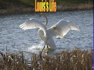 Louis's Life