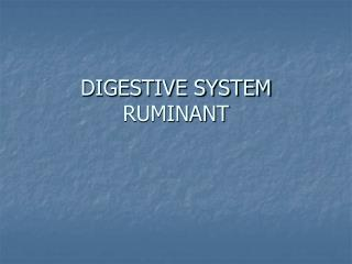 DIGESTIVE SYSTEM RUMINANT