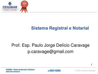 Prof. Esp. Paulo Jorge Delício Caravage pravage@gmail