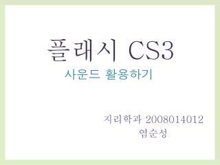 플래시  CS3