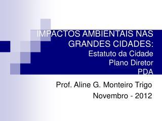 IMPACTOS AMBIENTAIS NAS GRANDES CIDADES: Estatuto da Cidade Plano Diretor PDA