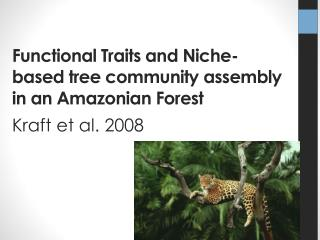 Functional Traits and Niche-based tree community assembly in an Amazonian Forest