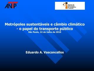 Metrópoles sustentáveis e câmbio climático - o papel do transporte público