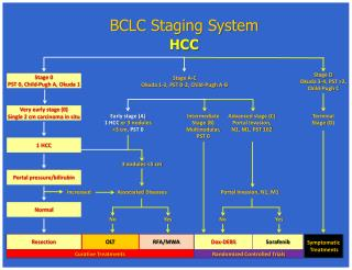 BCLC Staging System