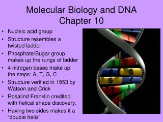 Molecular Biology and DNA Chapter 10