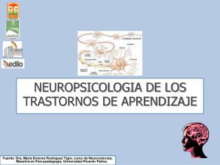 NEUROPSICOLOGIA DE LOS TRASTORNOS DE APRENDIZAJE