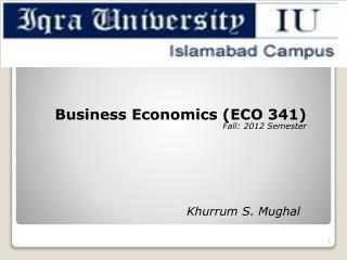 Business Economics ( ECO  341) Fall:  2012 Semester