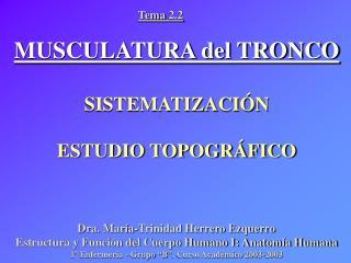 MUSCULATURA del TRONCO SISTEMATIZACI�N ESTUDIO TOPOGR�FICO