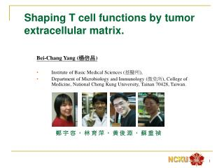 Shaping  T cell functions by tumor extracellular matrix.